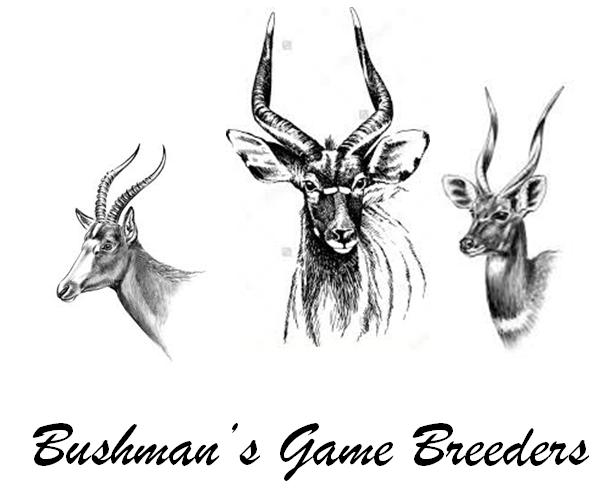 Bushmans Game Breeders -- Bushmans-Game-Breeders.WildTeKoop.co.za
